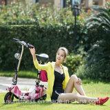 大人および子供のための電気スクーターFoldable Eのバイクを折るKoowheel 2の車輪モーター250W