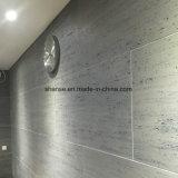 Chuveiro branco programável atraente Moisture-Resistant Azulejos do piso