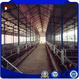 환경 친절한 금속 건물 강철 외양간 농장