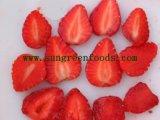 La nouvelle récolte de fraises IQF chinois