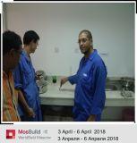 Chaîne de production de poudre de gypse de premier constructeur de la Chine
