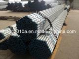 Pipes galvanizzato per Water Pipe (FRK009)
