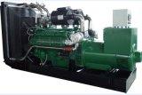 Gruppo elettrogeno del biogas 30kw-1200kw