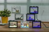 Tanque de 2017 peixes acrílico da venda quente creativa do projeto mini