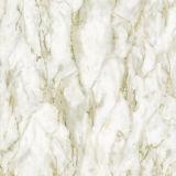 azulejo de suelo de cerámica de la porcelana Polished llena de mármol de 600X600m m (860602D)