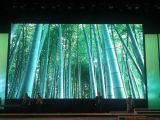 Il colore completo sottile eccellente LED dell'interno locativo di P3.9 SMD seleziona il comitato per gli eventi di cerimonia nuziale