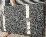 Piedra natural del granito azul real, azulejo del piso del granito