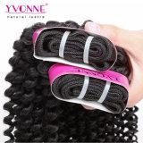 Горячие продавая волосы девственницы Yvonne Kinky курчавые бразильские (HJ2-MHW-BH4A-KC)