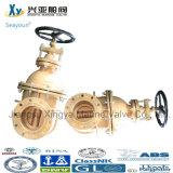 De In het groot Kleppen Manufacturergate van China voor Water