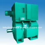 De Motor van gelijkstroom & de Kleine Windende Machine van de Motor van de Inductie