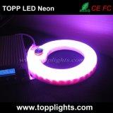 230V 120V 24V SMD5050 LED RGB 네온 코드