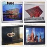 Function Glass / Special Glass for Home Decoration (S-TP)