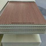 실내 장식을%s 상류 WPC 목제 플라스틱 합성 벽면