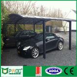 Baldacchino residenziale dell'automobile con alto Quanlity Pnoc110701ls