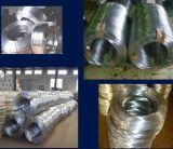 Alambre de acero galvanizado, alambre de acero de la primavera