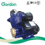 Bomba elétrica auto-estimulante com Micro Cp para lavagem de carros