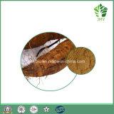 Isoflavones d'extrait de fond de Kudzu de qualité 40%, Puerarin 25%