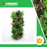 حديقة زخرفيّة شاقوليّ جديات اصطناعيّة خضراء لأنّ إستعمال خارجيّة
