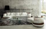 イタリアの現代熱くする革ソファー