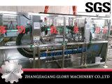 Nieuwe het Schoonmaken van de Fles van het Bier van het Ontwerp Automatische Machine
