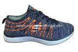 標準的なデザインはえのニットは靴の運動靴を遊ばす
