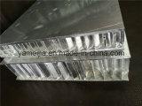 Descobrir os painéis de alumínio do favo de mel do revestimento para uma laminação mais adicional com pedra