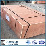Fabricante profesional exterior y espuma de aluminio interior