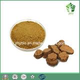 Китайский традиционный гликозид 2% выдержки Foti травы