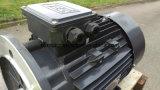 11kw le moteur électrique 3pH, 2 Pôle (3000RPM), Footflange a monté, le bâti 160
