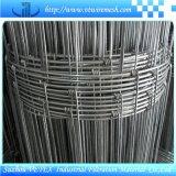 Engranzamento de fio da cerca da pradaria com relatório do GV