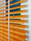 O External Venetian horizontal de alumínio cega cores do ouro