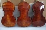 10 Jahre trockneten feste Flamewood fortgeschrittene antike Violine