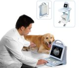 Sistema de ultrasonido Doppler con pantalla LED retroiluminada de veterinaria