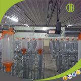 Système alimentant automatique à chaînes efficace pour le matériel automatique de porc ou de ferme de porc