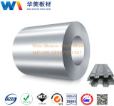 Rolls de acero galvanizado laminó la bobina/la hoja/la placa de acero