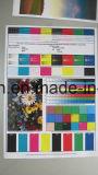 Tinta S-4670/S-4671/S-4672/S-4673 para la impresora de Hc 5000/5500/5500r