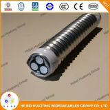 Tipo cable acorazado del alambre de tierra del cobre del alambre de la tira del enlace del aluminio de la chaqueta de PVC de AC/Bx