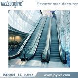 Escaleras móviles resistentes del transporte público