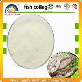Poudre hydrolysée de peptides de collagène de poissons