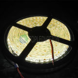 장식적인 점화 120LEDs/M SMD2835 유연한 LED 빛 지구 12V/24V DC
