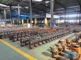 Élévateur à chaînes électrique d'espace libre inférieur fabriqué en Chine