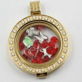 Оптовая монетка способа покрывает Jewellery для шкентеля Locket