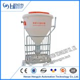 Automatic Pig Farming Dry/Wet Feeder