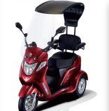電気三輪車のオートバイグリーン電力の電気スクーター