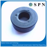 Ring van de Magneet van de Magneet van de Motor van het ferriet gelijkstroom de Permanente Ceramische
