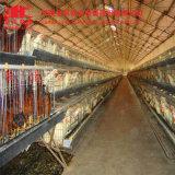 4 яруса тип система клетки цыпленка для Нигерии