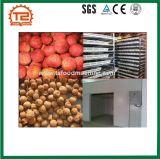 Tomate, Traube, Dattel, Zitrone-Trockner und Frucht-trocknende Maschine