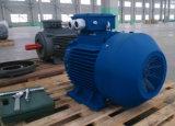 Ye3 Motor eléctrico de CA de la serie 4p de 5.5kw de hierro fundido