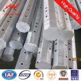 Nea Stahlpole 25FT 30FT 35FT 4FT 45FT Stahl Pole mit HDG