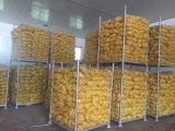 Neues Getreide-frische Kartoffel (150g und up)